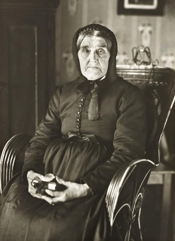 The Sage, 1913 (1913)