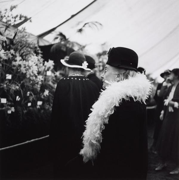 Untitled [Woman with Feather Boa, Chelsea Flower Show, London] (About 1935 (negative))