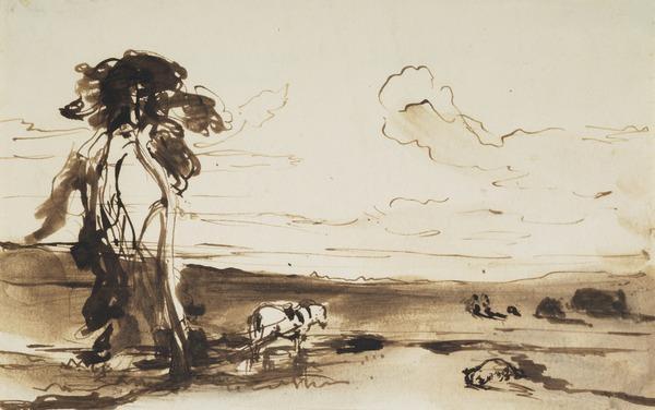 Landscape Study - 'Peat Moss'