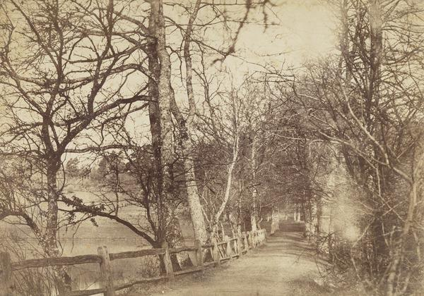 Losely Park (Probably taken between 1852 and 1854)