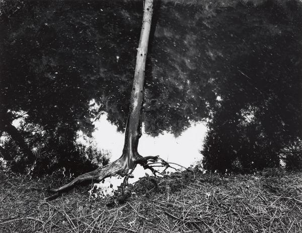 Untitled (1980 (printed 1999))