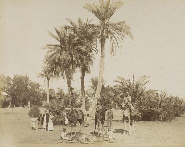 'Fontaine de Moise a Suez'.